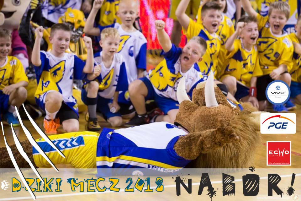 DZIKI_NABOR